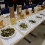 Ocenjevanje izdelkov iz suhih travišč v Halozah