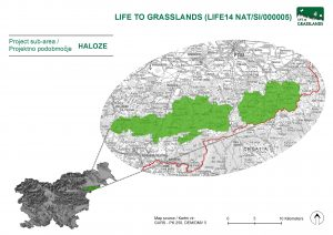 map_area_haloze