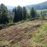 2018_08_08_Kum_C1_izvajanja del_kmetija Jamšek  (10)