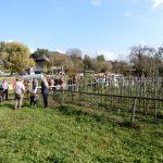 2018_10_09_Avstrija_ekskurzija kmetov_foto_LS (73)