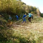 2019_10_12_Kum_C_1_3_prostovoljna akcija čiščenja zarasti_Žerko (58)