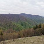 Razgled na Gorjance, Foto: Matej Simčič