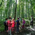 Poletni tabor Cvetnik_2