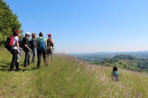 Nedeljski naravoslovni izlet po suhih travnikih