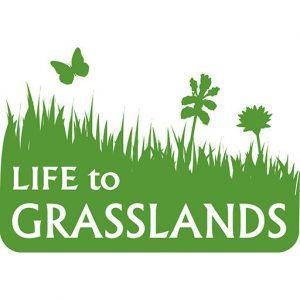cropped-GRASSLANDS.jpg