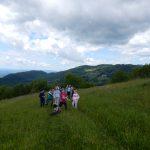 2019_05_23_Likovni natečaj_nagradni izlet v Kozjanski park (64)