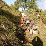 2019_10_12_Kum_C_1_3_prostovoljna akcija čiščenja zarasti_Žerko (27)
