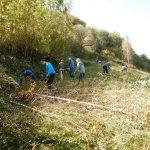 2019_10_12_Kum_C_1_3_prostovoljna akcija čiščenja zarasti_Žerko (56)